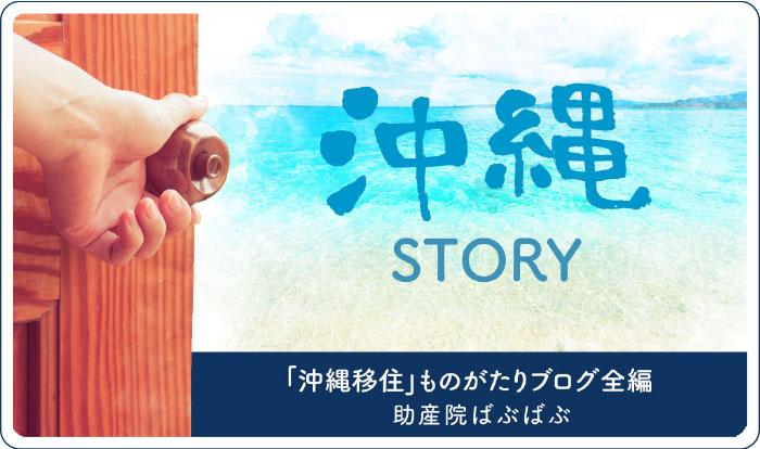 88da4dce524644ef09ad9f2b231407dc - 『沖縄移住』ものがたりブログ全編