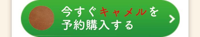 cart amlet03 camel 1 - 肩パット(お財布ショルダーマホン専用)
