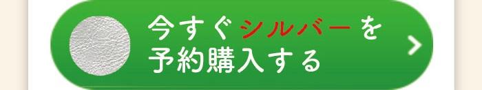 cart amlet03 silver 1 - 肩パット(お財布ショルダーマホン専用)