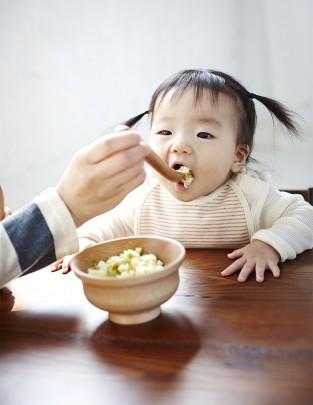 baby food 313x405 - ベビーフードはあかんの?