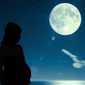 満月の夜はお産が多い