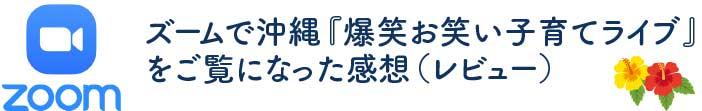 okinawa zoom Kanso - 沖縄初講演に参加したママパパの感想(レビュー)