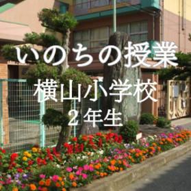 yokoyama inochi jyugyou s 279x279 - いのちの授業 和泉市立横山小学校 2年生