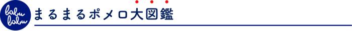 maru maru pomelo ZUKAN bana - ポメロ開発ものがたり(オールマイティウオッシュ)
