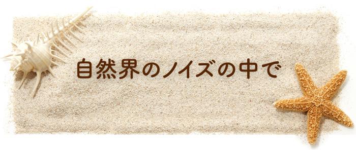 05 2 okinwa noizu - (5)助産院ばぶばぶ 移転します!