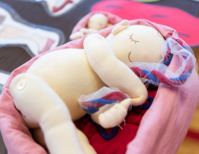 baby doll - 【いのちの授業】動画が完成しました!