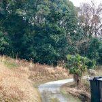 S  8880166 150x150 - 【ご成約感謝】大阪の自宅を売ります!『新喜劇』★藍ちゃん営業マン