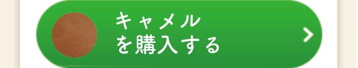 btn buy camel 1 - アムレット(マホン専用キーホルダー)