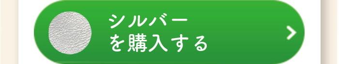 btn buy silver - アムレット(マホン専用キーホルダー)
