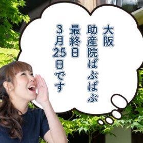 大阪・助産院ばぶばぶ最終日3/25です